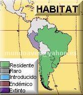 Reforma educativa 2011 primaria